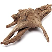 Calli La raíz de la madera flotante registra