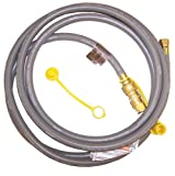 21st Century R12 12-Feet Natural Gas Hose