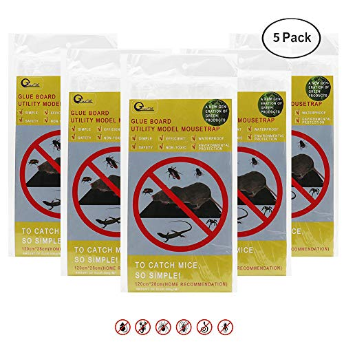 GraceFINE Mose Sticky Glue Traps, Rat Nontoxic Glue Boards Super Sticky Extra Large Rat Glue Traps Mouse Catchers for Mice & Rodent &Pests & Bug & Ant & Spider& Cockroach (5 PACK)