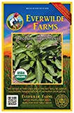 Everwilde Farms - 1000 organic Lemon Basil Herb Seeds - Gold Vault Packet