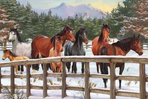 - Cobble Hill Snowy Pasture