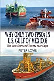 img - for Why Only Two Fpsos in U.S. Gulf of Mexico?: The Late Start and Twenty Year Saga book / textbook / text book