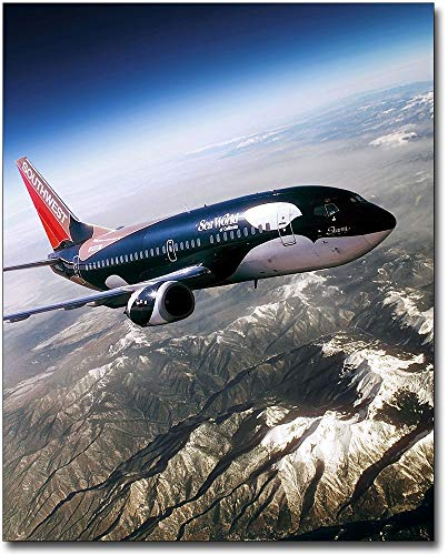 Southwest Airlines Boeing 737 Seaworld 'Shamu' 8x10 Silver Halide Photo Print