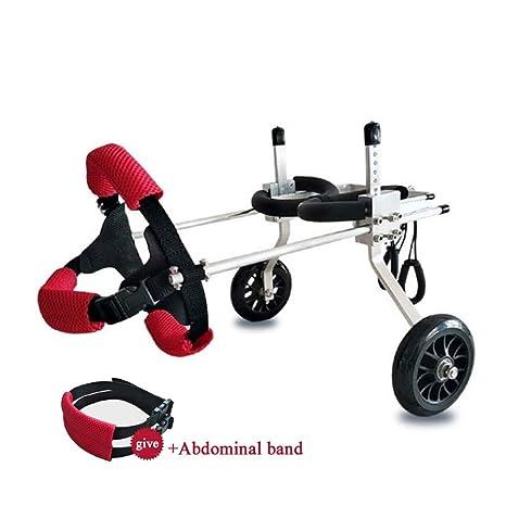 Silla de ruedas para perros ajustable Best Friend: silla de ruedas para perros, silla