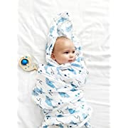 100% Organic Muslin Swaddle Blanket by ADDISON BELLE - Oversized 47 inches x 47 inches - Best Baby Shower Gift - Premium Receiving Blanket (Sharks Print)