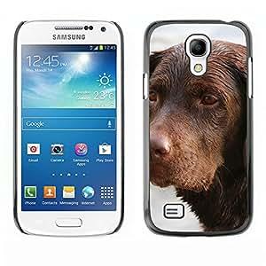 Super Stella Slim PC Hard Case Cover Skin Armor Shell Protection // M00105161 Animal Dog Dog Head German-Shorthair // Samsung Galaxy S4 Mini i9190