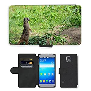 CARD POCKET BOOK CASE PU LEATHER CASE // M00146444 Zoo Bajos Holanda Sand Meerkat // Samsung Galaxy S5 S V SV i9600 (Not Fits S5 ACTIVE)