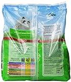 Kaytee-Fiesta-Mouse-and-Rat-Food-45-lb-bag