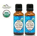 US Organic 100% Pure Tee Tree Essential Oil - Best Reviews Guide