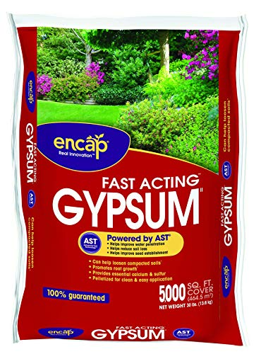 Encap 1061063 Gypsum Plus AST Coverage, 30-Pound (Pinterest Backyard Patios)