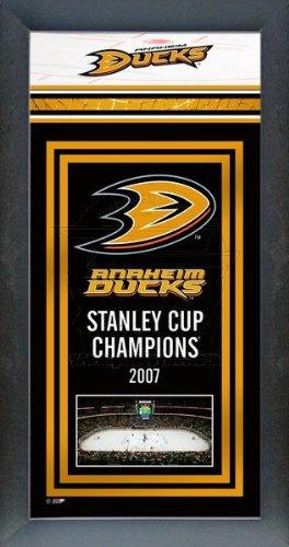Anaheim Ducks Framed Team Championship Banner Series