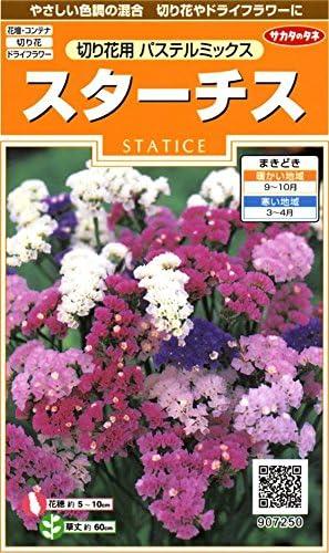 サカタのタネ 実咲花7250 スターチス 切り花用パステルミックス 00907250