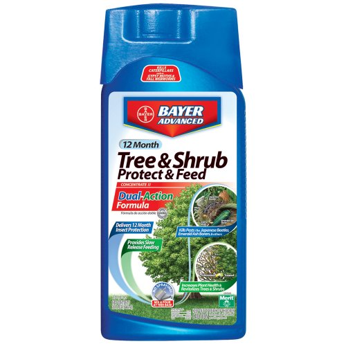Tree And Shrub Protect And Feed