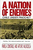 A Nation of Enemies: Chile Under Pinochet (Norton Paperback)