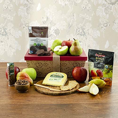 Healthy Options Organic Fruit & Snax Gift Box (693)