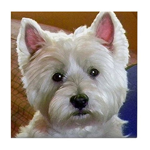 (CafePress - Westie Accents - Tile Coaster, Drink Coaster, Small Trivet)