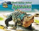 Black Spiny-Tailed Iguana, Natalie Lunis, 193608791X