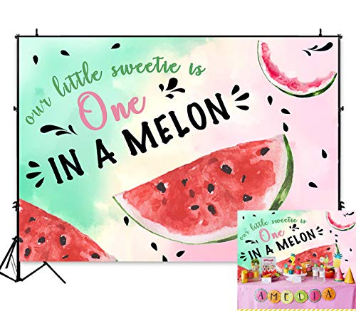 Art Studio 7x5ft Summer Fruit Watermelon Theme Photography Backdrop Watercolor Sweet One in a Melon Birthday Party Cake Table Decoration Photo Background for Girls Studio Booth Props Vinyl