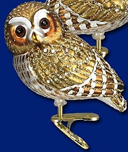 Old World Christmas Clip On Pygmy Owl Bird Blown Glass Ornament 18067 Free Box