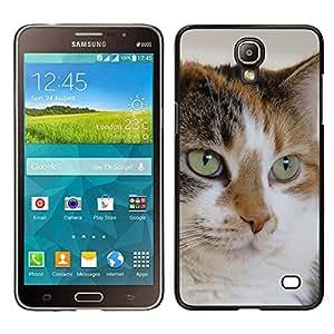 TopCaseStore / la caja del caucho duro de la cubierta de protección de la piel - Mutt Mongrel Cat House Cat Mixed - Samsung Galaxy Mega 2