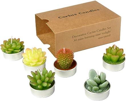 Amazon.com: SanSeng Cactus velas de vela, hechas a mano ...