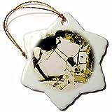 3dRose orn_182055_1 Arabian Horse Jumping Sepia Posturized Snowflake Ornament, Porcelain, 3''