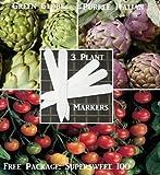 Organic Bulk 2 Artichoke Seeds Survival Seeds 440 Seeds Upc 646263360682 + 3 Plant Markers Jersey Mary Washington