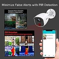 ANNKE Kit de Seguridad 8CH DVR 3MP 5-en-1 H.265+ y 4 Cámaras de vigilancia CCTV 1080P IP66 PIR Detección Alarma de luz Intermitente Acceso Remoto-sin ...