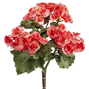 "10"" Silk Begonia Flower Bush -Watermelon (Pack of 12) 49"