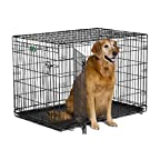 "MidWest iCrate 42"" Double Door Folding Metal Dog Crate w/ Divider Panel, Floor Protecting ""Roller"" Feet & Leak-Proof Plastic Tray; 42L x 30W x 28H Inches, Large Dog Breed"