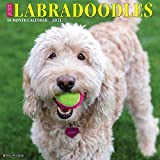 Just Labradoodles 2021 Wall Calendar (Dog Breed Calendar)