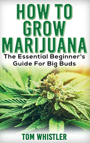 51mjbWdVXOL - Marijuana: How to Grow Marijuana - The Essential Beginner's Guide For Big Buds