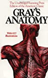 img - for Gray's Anatomy::The Unabridged Running Press Edition of the American Classic[Paperback,1974] book / textbook / text book