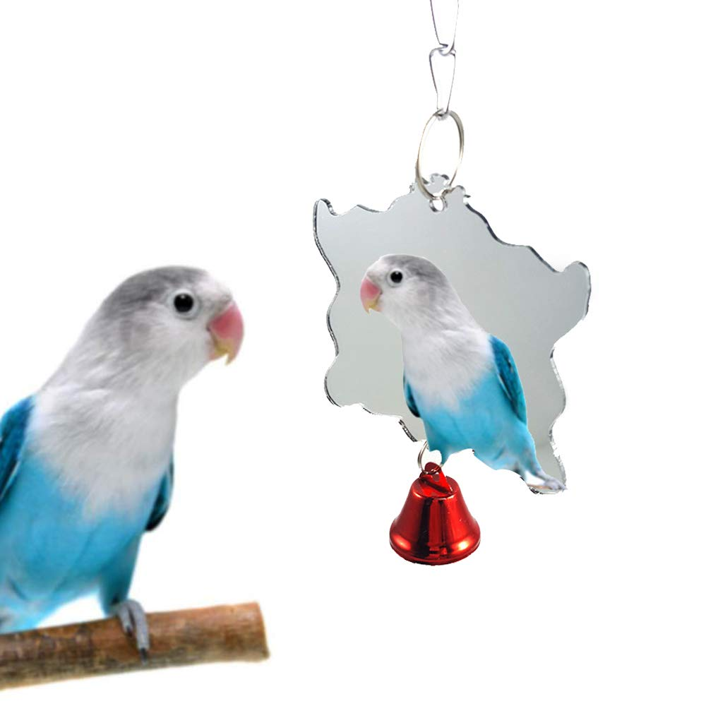 10 Best Cockatiel Toys