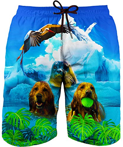 Asylvain Green Summer Beach Swimming Trunk Suit with 3D Print Graphic Dog and Sea Lion Design Quich Dry Pants, Small