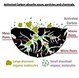POTAUTO MAP 1003C (CF10134) Activated Carbon Car