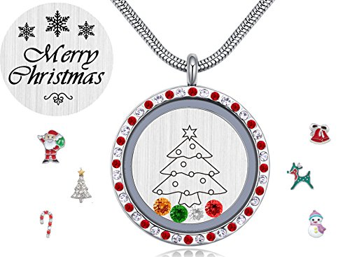 Christmas Gift Ideas, Floating Charms Living Memory Locket, 30mm Diy Pendant Necklace with Birthstones
