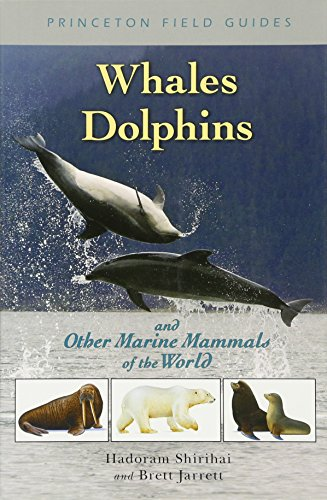 Whales, Dolphins, and Other Marine Mammals of the World (Princeton Field Guides) from Brand: Princeton University Press