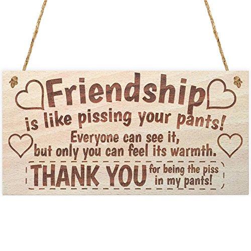 Meijiafei Best Friend Plaque Friendship is Like Pissing Your Pants Wooden Sign