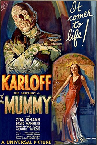 HSE Boris Karloff The Mummy Movie Poster 1932 Campy Classic Horror 24X36 Scary (Reproduction, not an Original) -