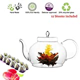 Tea Beyond Tea Set Teapot Polo 45 Oz/1330 Ml and English Breakfast Flowering ...