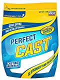 Cast and Paint 2 Pound PerfectCast Casting Material