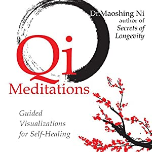 Qi Meditations Speech