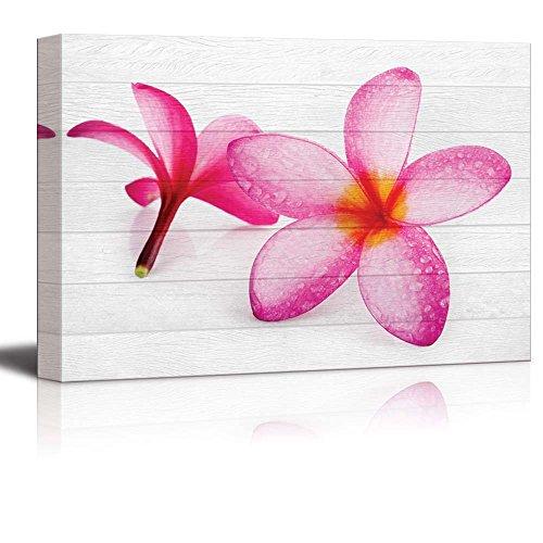Pink Hawaiian Plumeria Flowers on White Wood Panels