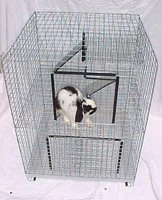 2 Story Condo Jaula para conejo o Ferret: Amazon.es: Productos ...