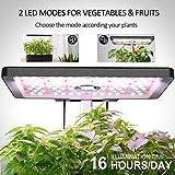 iDOO 12Pods Indoor Herb Garden Kit, Hydroponics