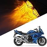 Motorcycle Smoke LED Flush Mount Turn Signal Light Side Marker Lamp for Suzuki BANDIT GSX1250FA GSXR1000 1000Z GSXR600 600M 600X 600Z GSXR750 750X Hayabusa Katana 600 750 SFV650 SV1000 1000S SV650