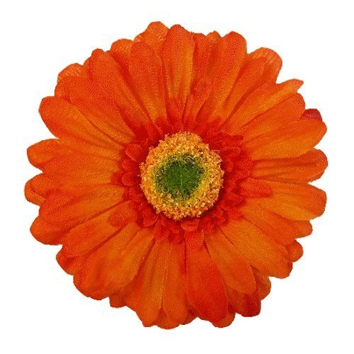 Price comparison product image Gerbera Daisy Artificial Flower Hair Clip/Pin Brooch, Rust Orange