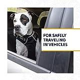 RUFFWEAR, Load Up, Dog Car Harness with