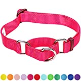 #2: Blueberry Pet 12 Colors Safety Training Martingale Dog Collar, French Pink, Large, Heavy Duty Nylon Adjustable Collars for Dogs